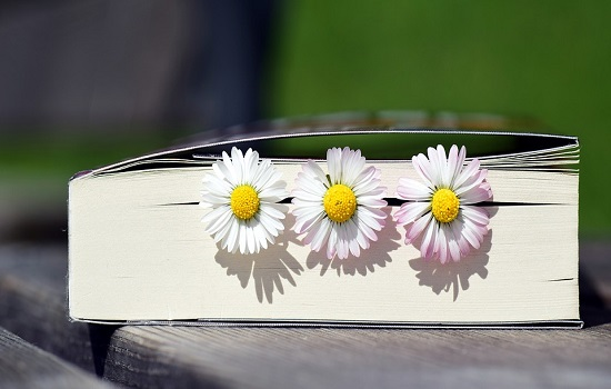 ¿Sabías que puedes puntuar los libros del catálogo y dejar tus comentarios?