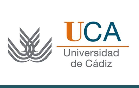 La Universidad de Cádiz en un entorno global según su producción científica